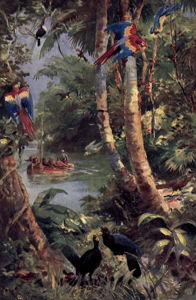Pioneers in Tropical America - Raleigh's Men one the Orinoko (1914)