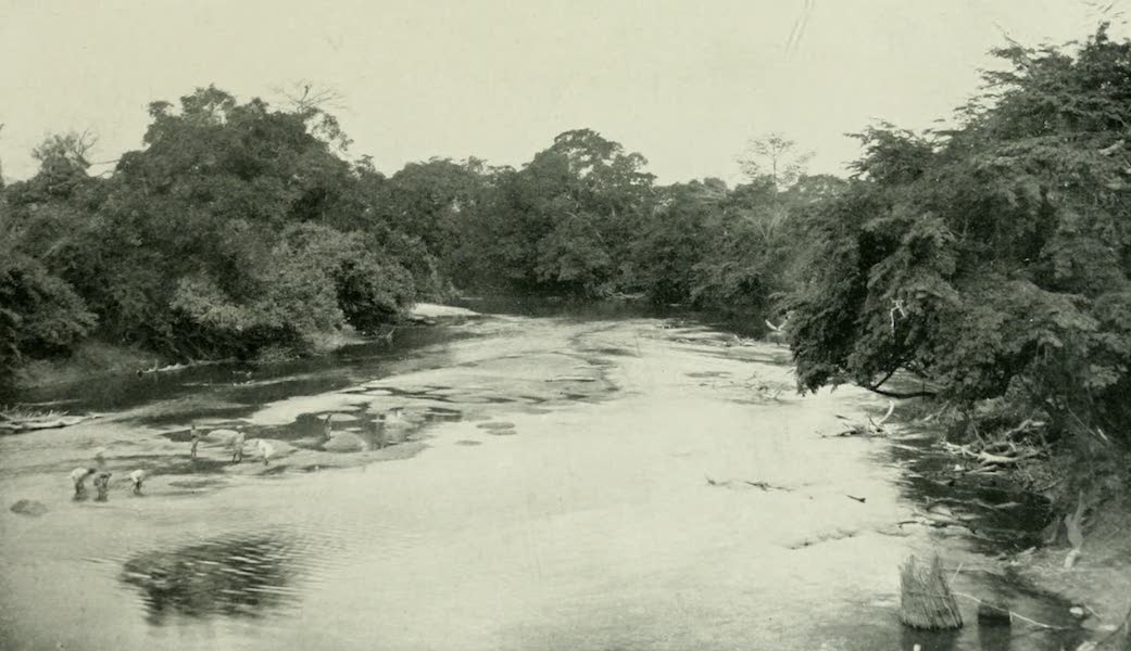 Pioneers in West Africa - The Niger River Near Falaba and Not Far from its Source (1912)
