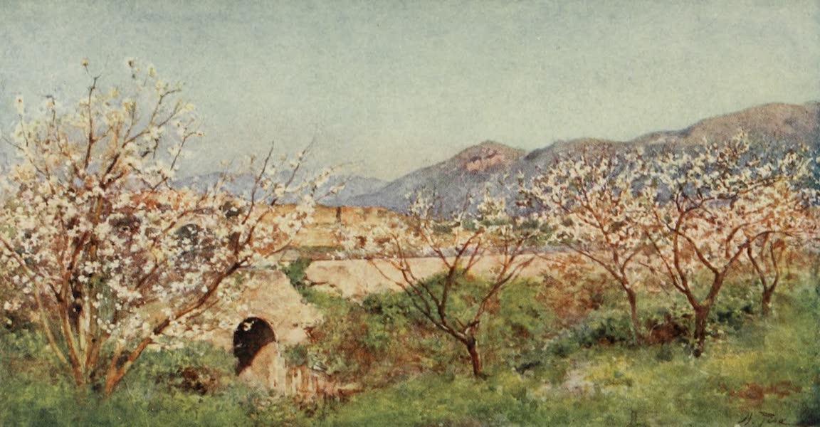 Pompeii : Spring