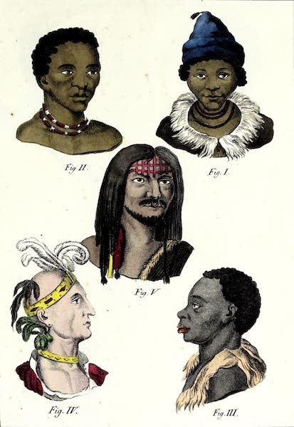 Porte-Feuille Geographique et Ethnographique [Atlas] - [Assorted Facial Profiles - IV] (1820)