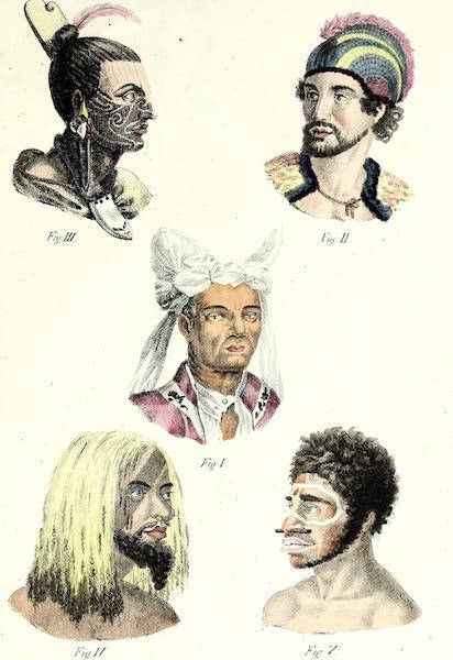 Porte-Feuille Geographique et Ethnographique [Atlas] - [Assorted Facial Profiles - V] (1820)