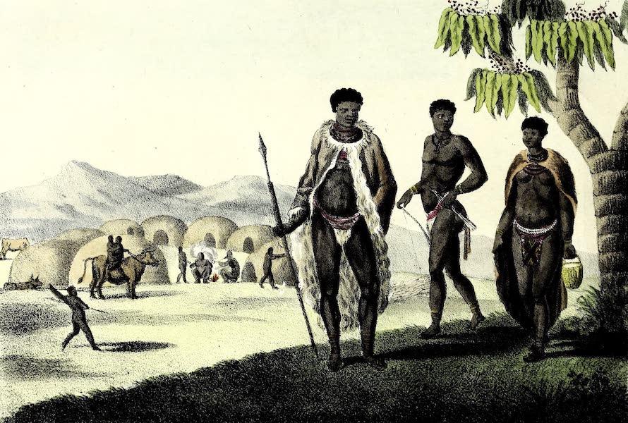 Porte-Feuille Geographique et Ethnographique [Atlas] - Hottentots (1820)
