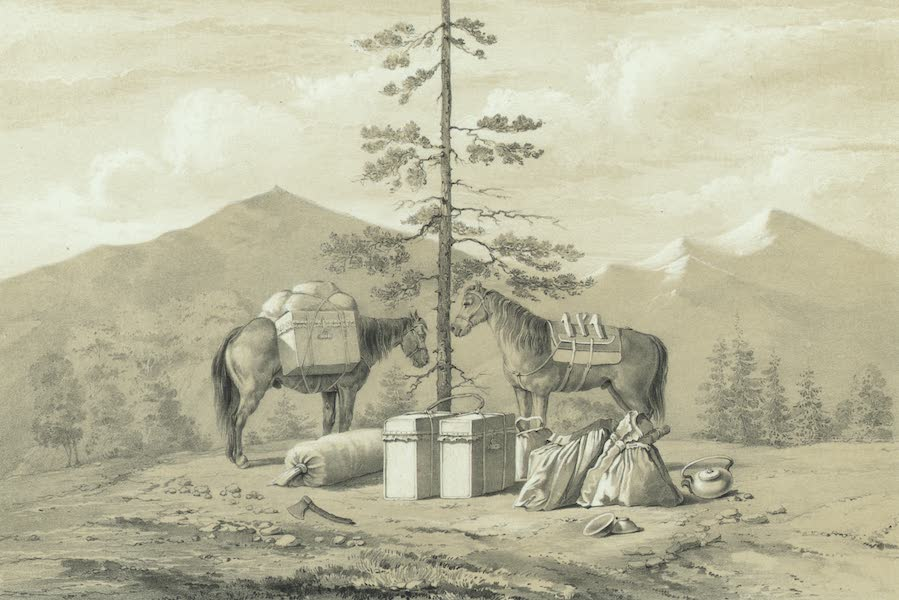 Puteshestvie po vostochnoi Sibiri - V'iuchnyia loshadi (1856)