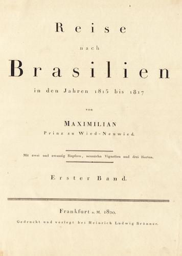 Reise nach Brasilien Vol. 1 (1820)