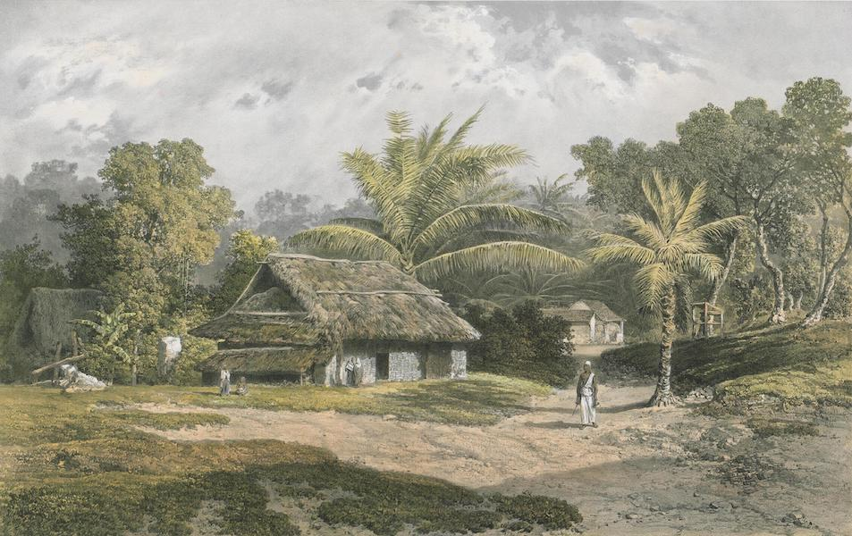 Results of a Scientific Mission to India and High Asia Atlas - Palm Grove and Singhalese Habitations near Galle Ceylon (1866)