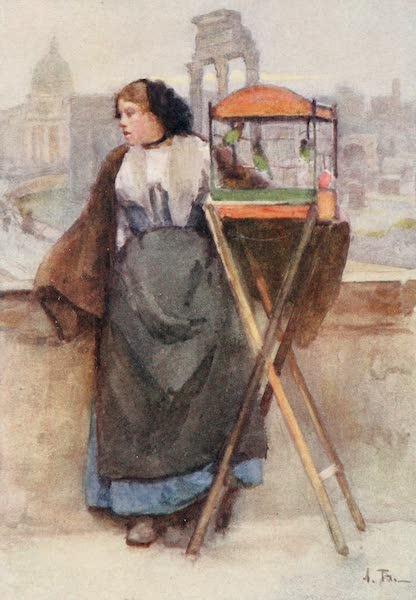 Rome, Painted and Described - Girl selling Birds in the Via del Campidoglio (1905)