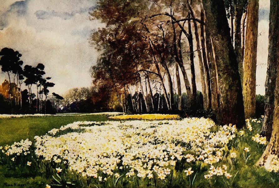 Royal Palaces and Gardens - The Park, Sandringham (1916)