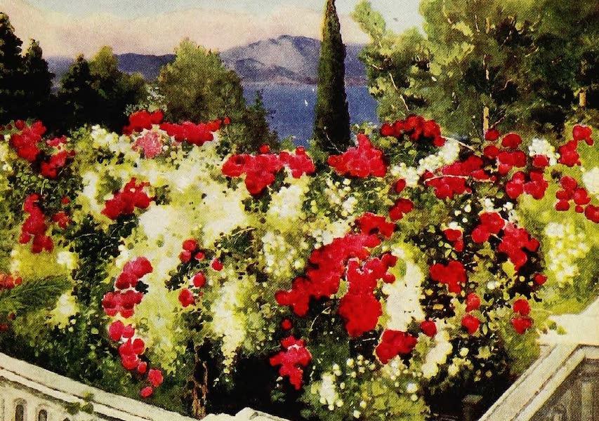Royal Palaces and Gardens - The Rose Pergola, Achilleion, Corfu (1916)