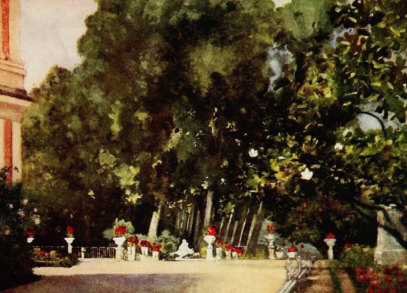 Royal Palaces and Gardens - The Magnolia Tree, Aranjuez (1916)