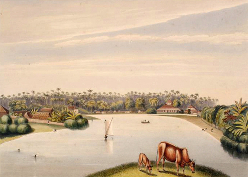 Scenery and Reminiscences of Ceylon - The Lake of Colombo and Slave Island, from the Glacis (1845)