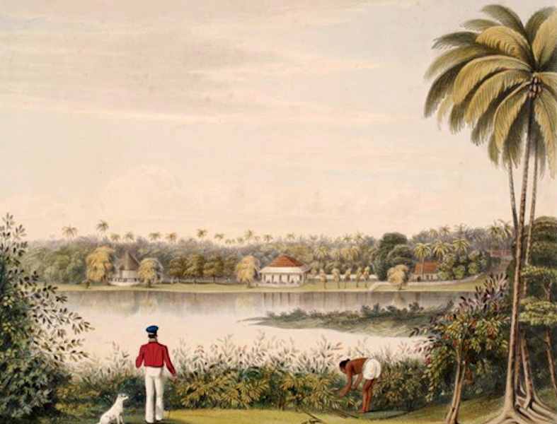 Scenery and Reminiscences of Ceylon - Colpitty, from the Cinnamon-Gardens (1845)