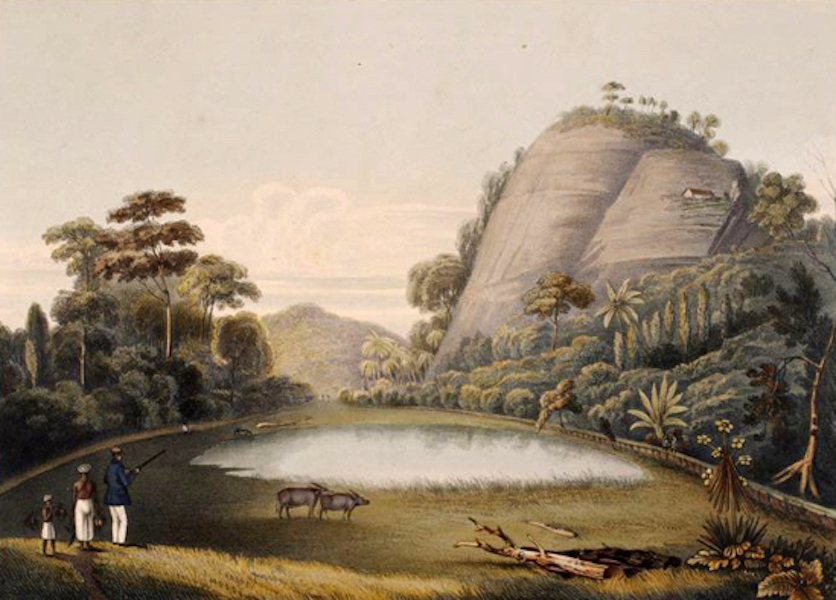 Scenery and Reminiscences of Ceylon - The Rock of Mulkirrigalle (1845)