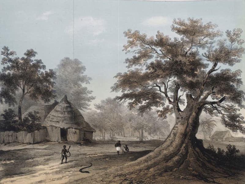 Schetsen van Afrika's Westkust - Slangenhuis of Fetiche-Tempel Te Wijdah, Koningrijk Dahomeij (1861)