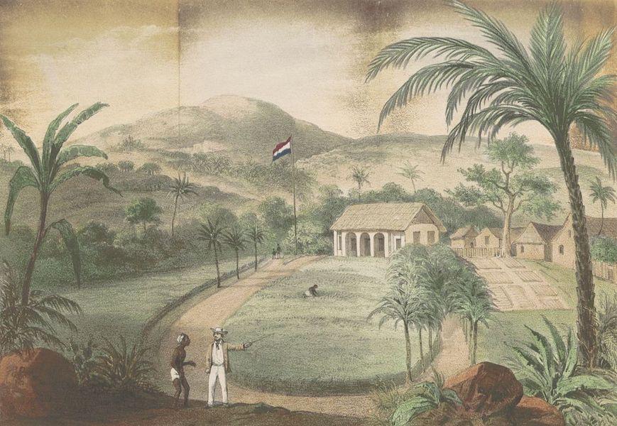 Schetsen van Afrika's Westkust - Plantage