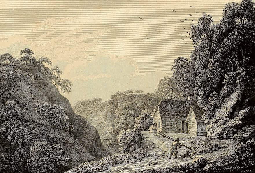 Select Views in Great Britain - View on Shanklin Chine (1813)