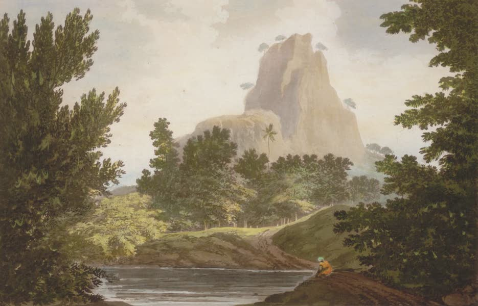 Select Views in India - A View in the Jungle Terry (1797)