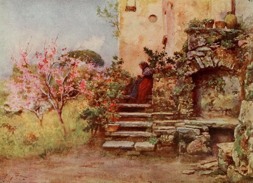 Sicily, Painted and Described - Garden at Monte San Giuliano (1911)