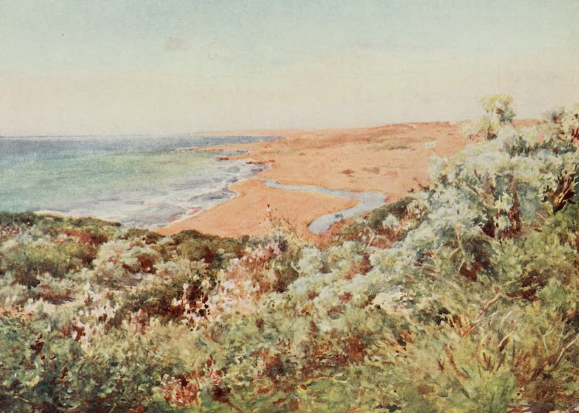 Sicily, Painted and Described - Seacoast, Selinunte (1911)