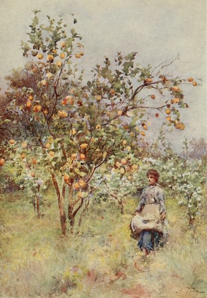 Sicily, Painted and Described - La Caldura, Cefalu (1911)
