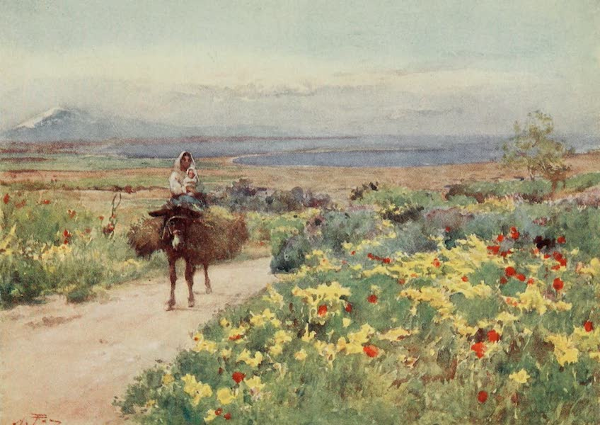 Sicily, Painted and Described - Spring at Syracuse. View of Etna and Thapsos from Site of Tyche (1911)