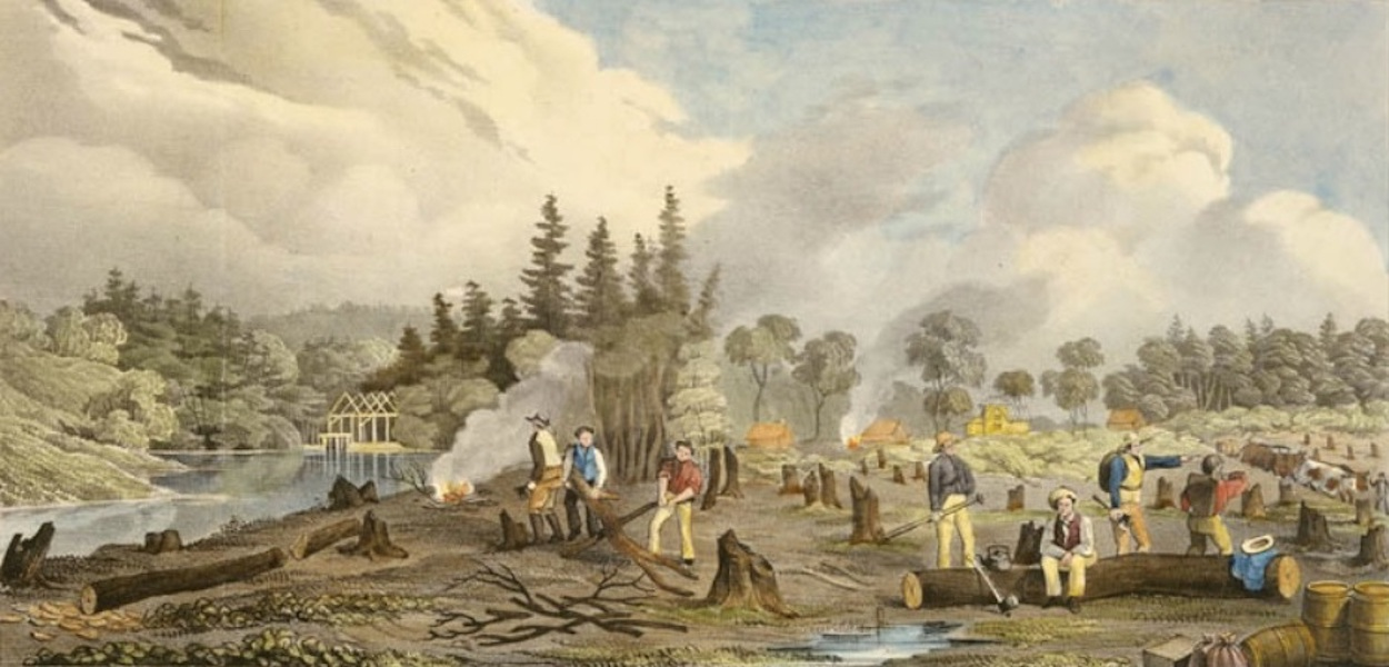 Sketches in New Brunswick - Process of Clearing the Town-Plot of Stanley (1836)