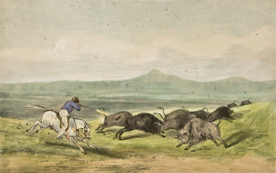 Sketches in North America and the Oregon Territory - Buffalo Hunting on the W. Prairies (1848)