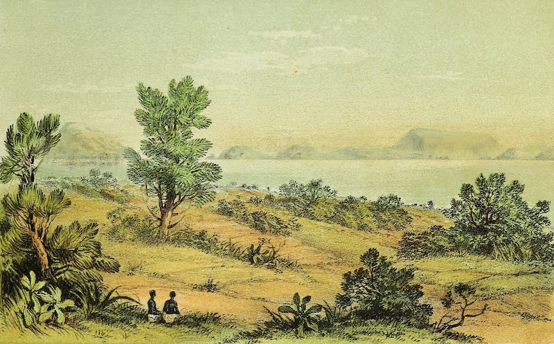 Sketches of African Scenery - Grant Bay, Victoria, Nyanza from the Island of Ukerewe (1878)