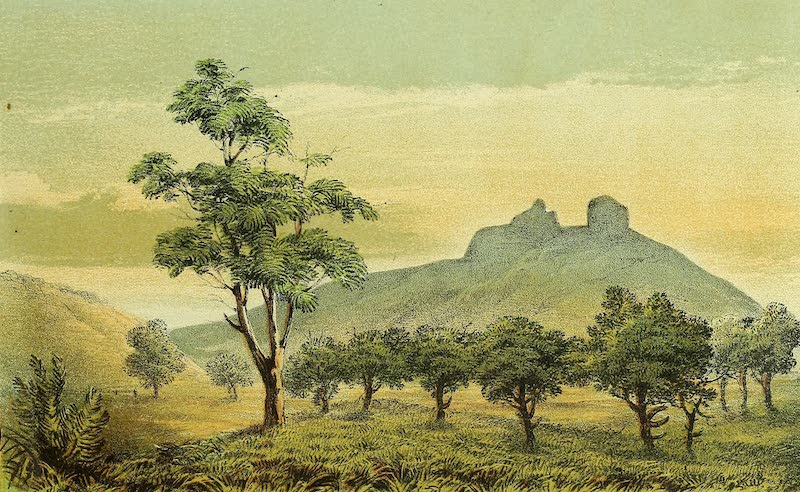 Sketches of African Scenery - View in the Nguru Mountains Near Mamro on the Wami (1878)
