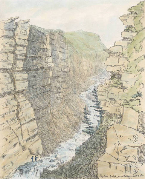 Sketches of Newfoundland and Labrador - Taylor's Gulsh (1858)