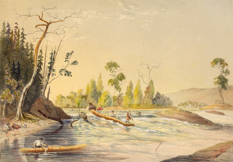 Sketches on the Nipisaguit - Shooting a Rapid (1860)