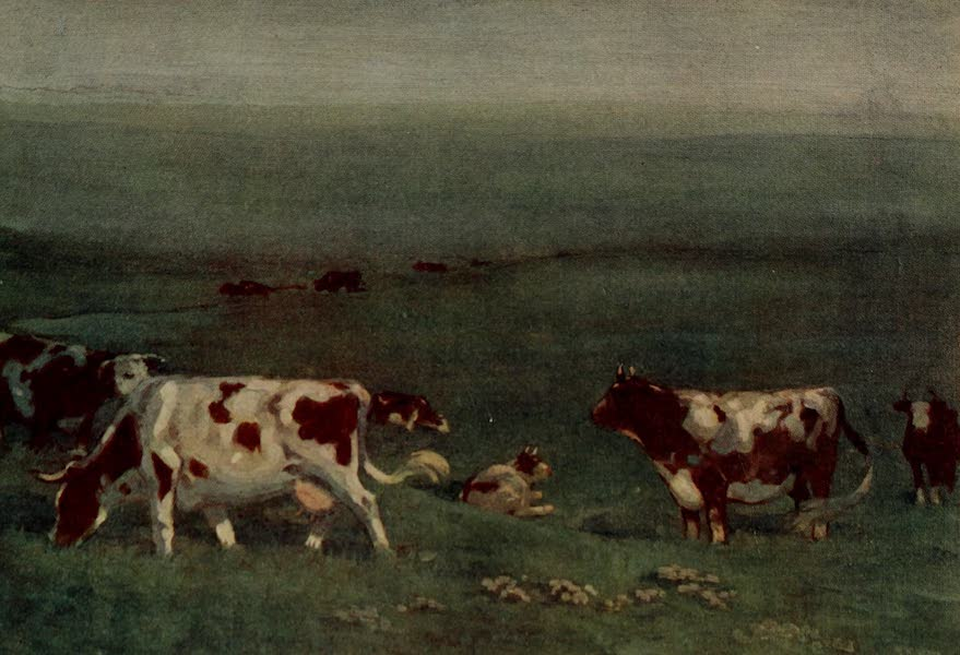 South America, Painted and Described - A Scene on an Argentine Estancia (1912)