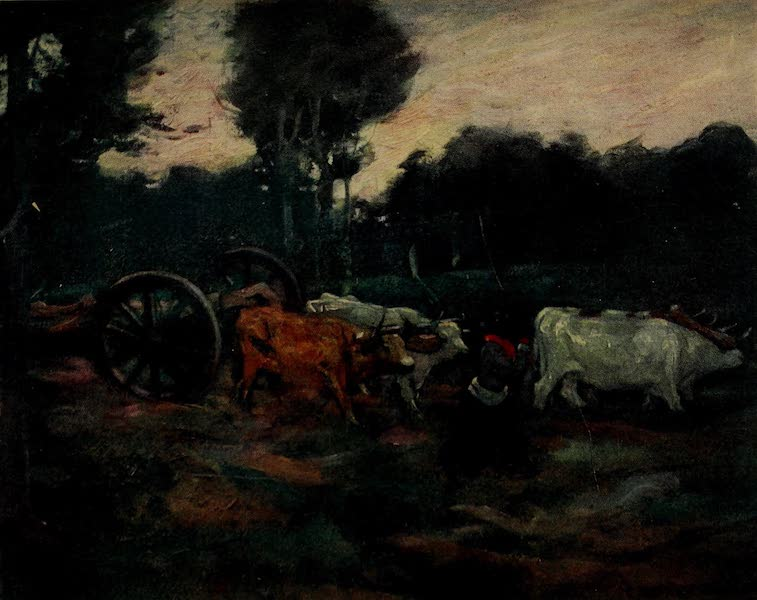 South America, Painted and Described - A Bullock Team Hauling Timber in the Chaco, Argentina (1912)