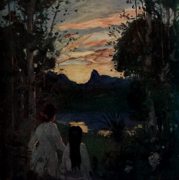 South America, Painted and Described - Brazilian Woodland Scenery at Sunset (1912)