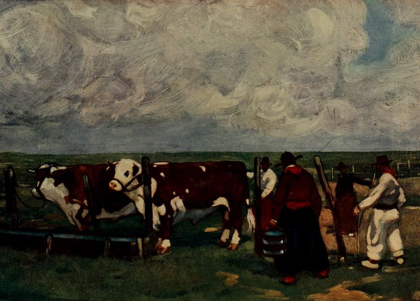 South America, Painted and Described - Pedigree Herefords on the Bichadero Estancia (1912)