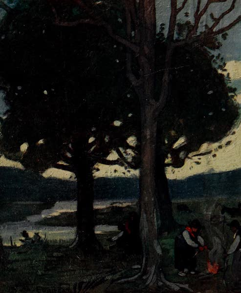 South America, Painted and Described - A Corner of a Uruguayan Campo (1912)