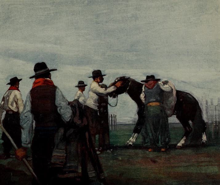 South America, Painted and Described - Guachos Breaking in a Young Horse on the Bicha-Dero Estancia, Uruguay (1912)