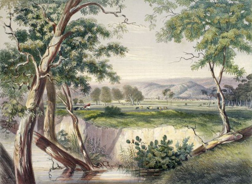 South Australia Illustrated - The City of Adelaide, from the Torrens, near the Reed Beds (1847)