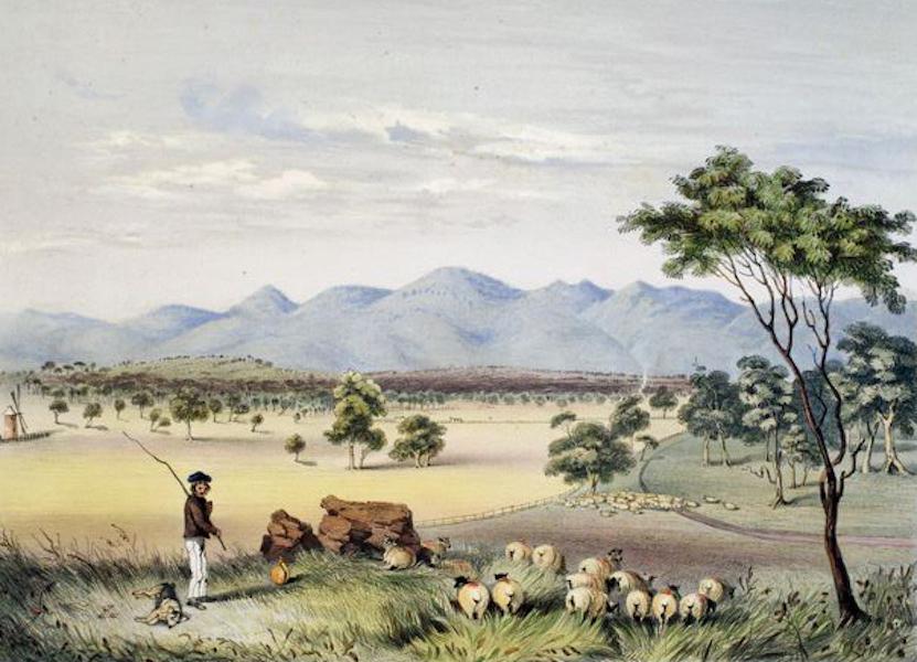 South Australia Illustrated - Lynedoch Valley, looking towards the Barossa Range (1847)