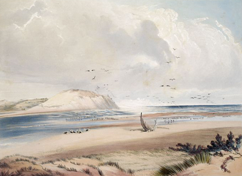 South Australia Illustrated - Sea Mouth of the Murray (1847)
