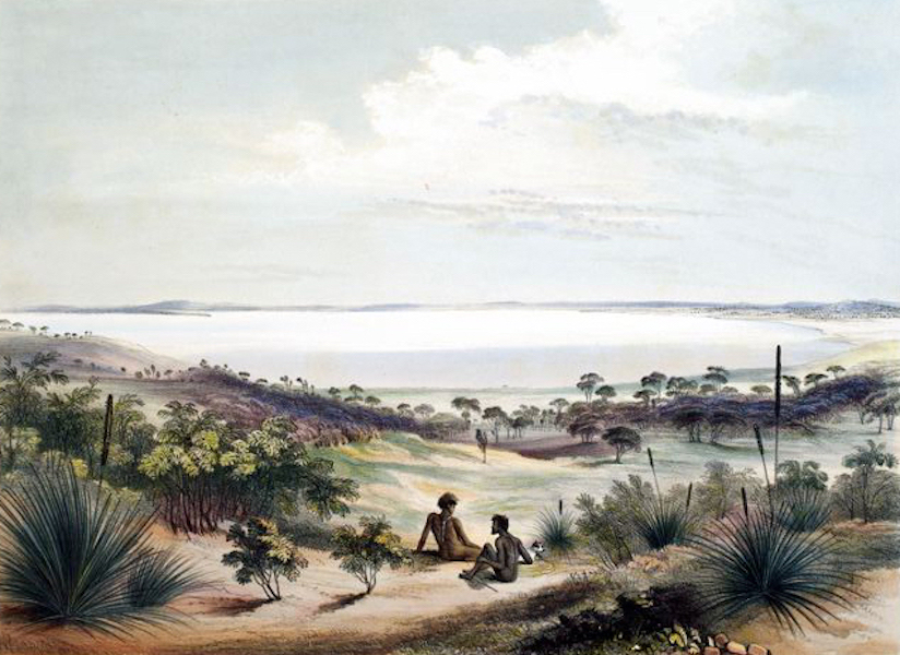 South Australia Illustrated - Lake Albert, from the Great Scrub, beyond Bonney's water-holes (1847)