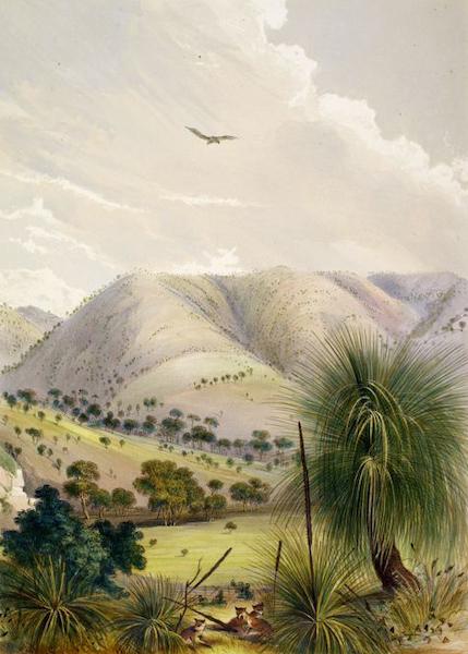 South Australia Illustrated - Yattagolinga (1847)