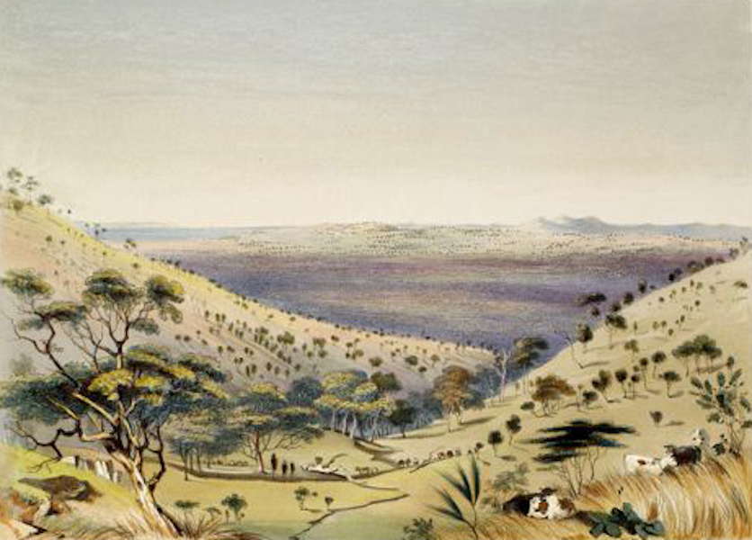 South Australia Illustrated - View from Hall's Gully, looking over Angas Park The Belvidere Range in the distance (1847)