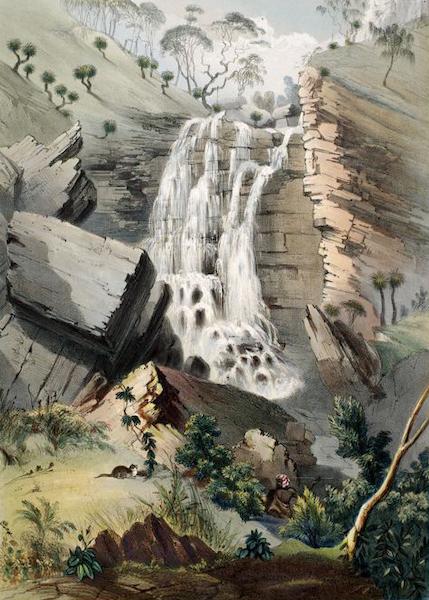 South Australia Illustrated - Falls of Glen Stuart on the Moriatta Creek (1847)