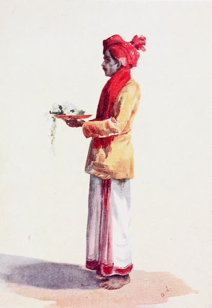Southern India, Painted and Described - The Cook at Government House, Madras (1914)