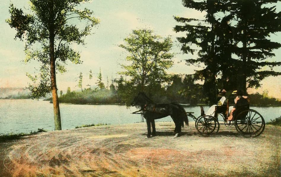 Souvenir Album of Seattle, Washington - Washington Park Boulevard, Seattle. A Picturesque Driveway. Showing Lake Washington (1900)