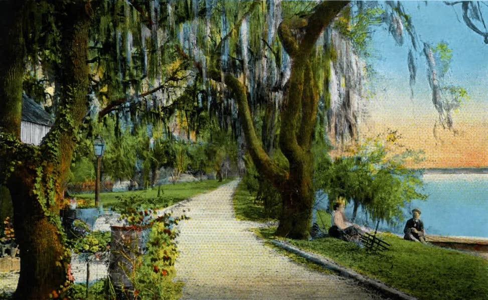 Souvenir of Daytona and Daytona Beach, Florida - A Restful Spot on the Halifax River, Daytona (1917)