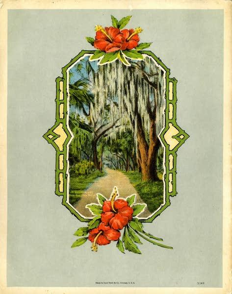 Souvenir of Daytona and Daytona Beach, Florida - Back Cover (1917)