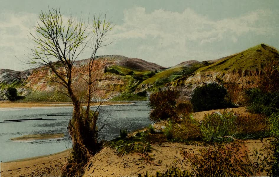 Souvenir of Lethbridge, Alta. - Along the River Banks (1910)