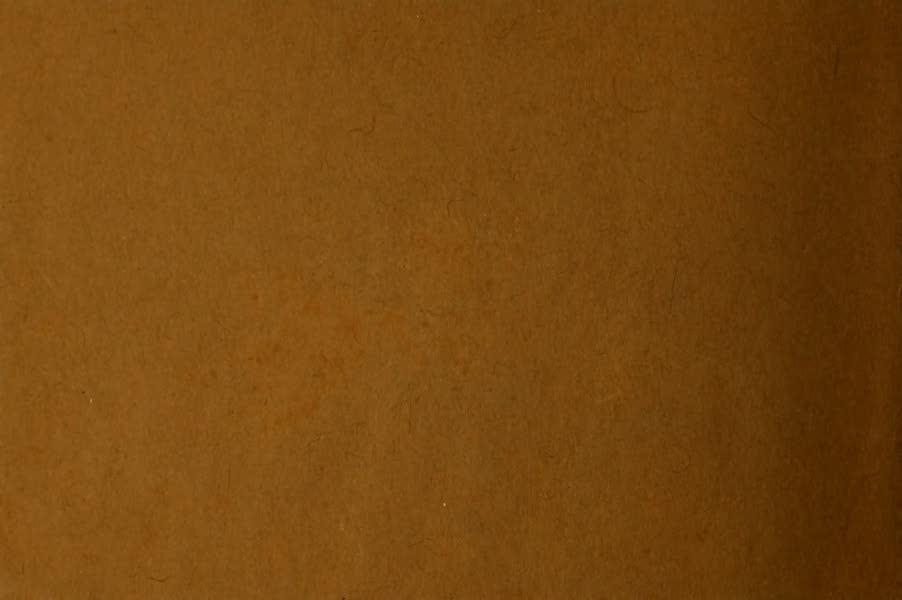 Souvenir of Lethbridge, Alta. - Back Cover (1910)