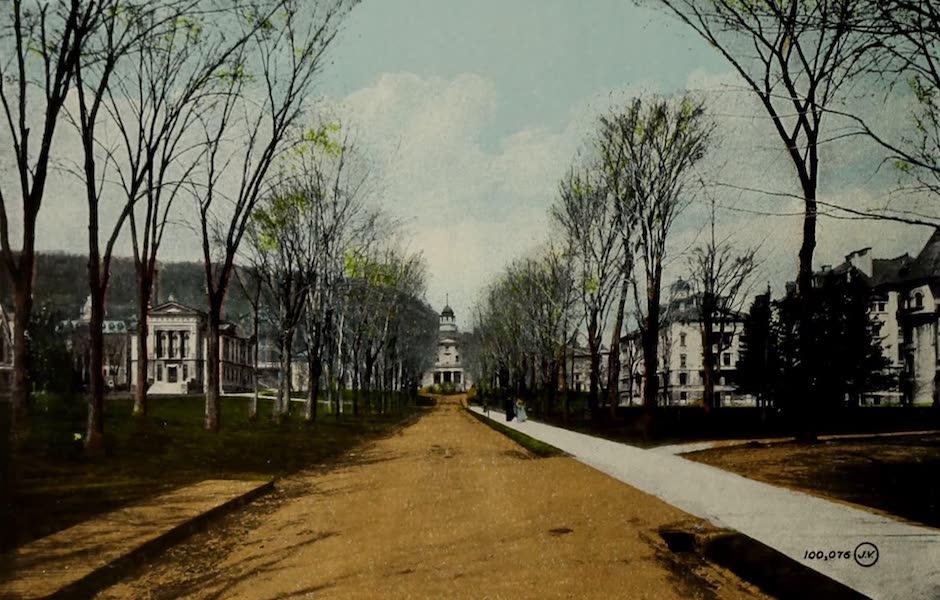 Souvenir of Montreal - McGill University (1910)